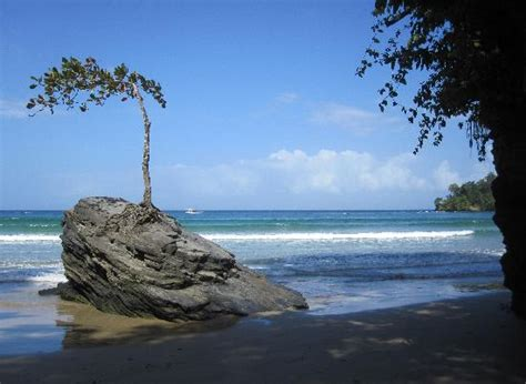 Beautiful and interesting Beach - Picture of Las Cuevas