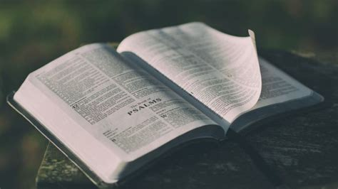 How to Study a Passage of Scripture | Cru