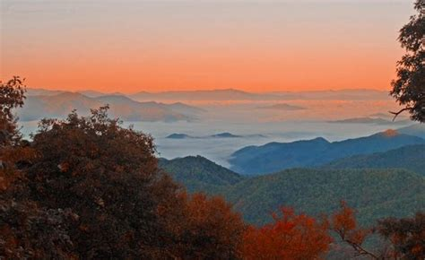 Blue Ridge Parkway (Asheville, NC): Top Tips Before You Go