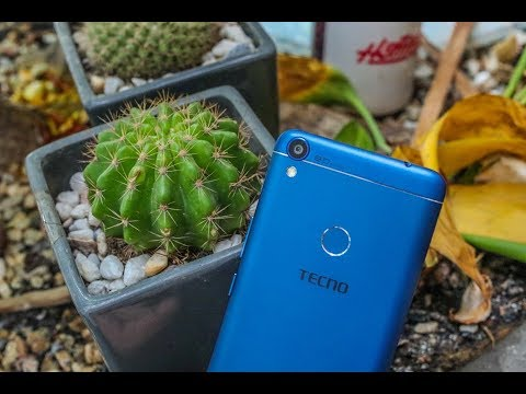 Tecno WX4 Specifications, Review, Features and Price