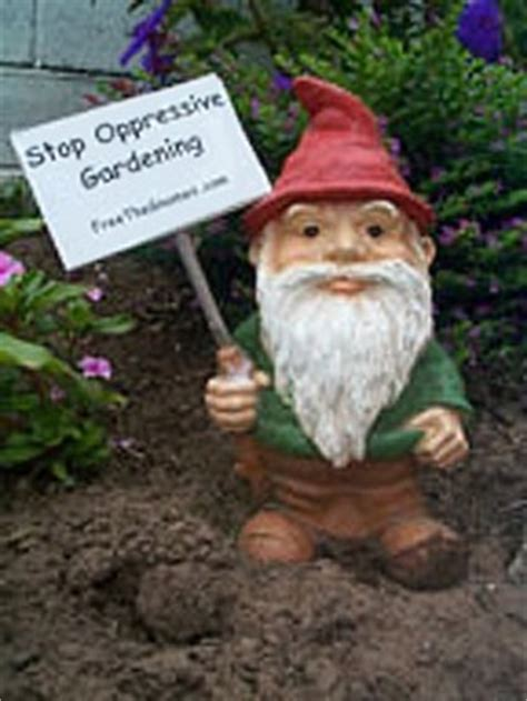 General Gnome and Garden Gnome Information - Just Say Gnome!