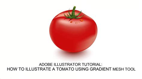 [Video Tutorial] How to create a Tomato Vector in Adobe