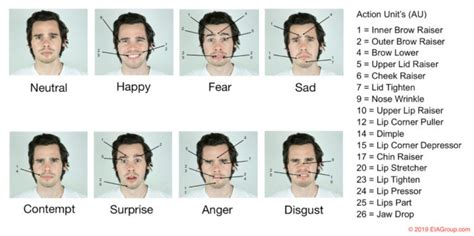 Expressions faciales et micro-expressions | EIA Group (FR)