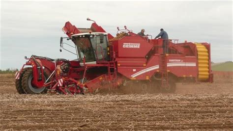 Used Grimme VARITRON 270 TERRA TRAC potato harvesters and